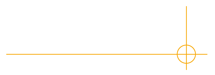 Robertson and Co - Investigation and intelligence services